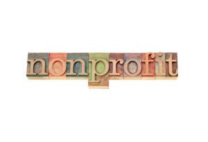 non-profit accountant